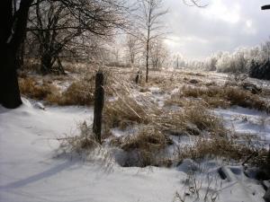 winter-small