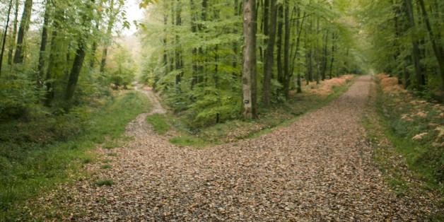 The Road Less Traveled: A Short Story | by Jonny Parker, MBA | Medium